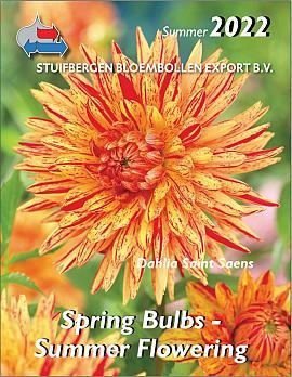 Spring Bulbs - Summer Flowering